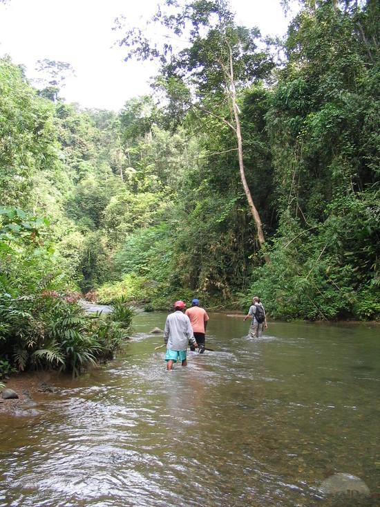2-darien-national-park-treking-pinas-bay