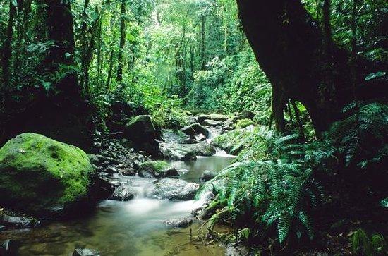 darien-national-park